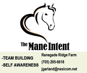 The Mane Intent